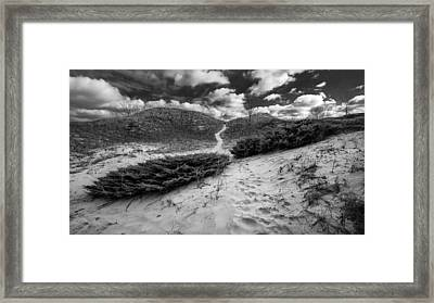 Go Between Framed Print by Josh Eral