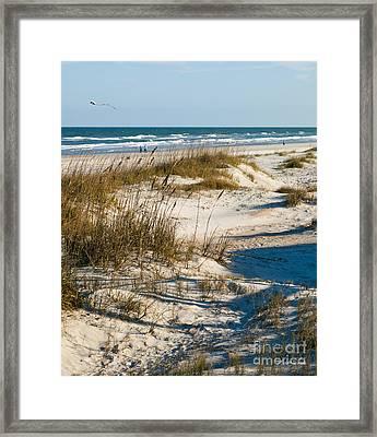 Go Fly A Kite Framed Print by Michelle Wiarda
