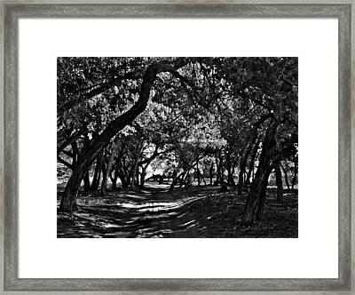 Go Toward The Light Framed Print by Bob and Nadine Johnston