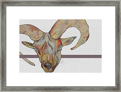 Goat Framed Print by Water Lily