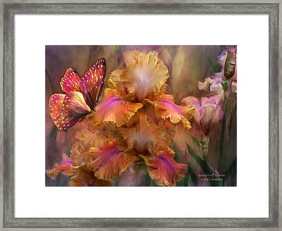 Goddess Of Sunrise Framed Print by Carol Cavalaris