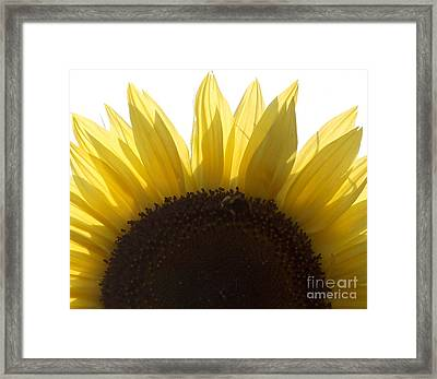 God's Crocheting Framed Print by French Toast