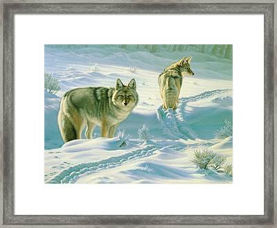 God's Dogs Framed Print by Paul Krapf