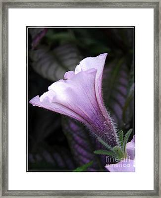 God's Grace Is Enough Framed Print by Sara  Raber