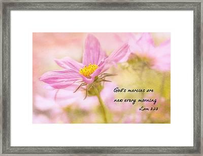 God's Mercies Framed Print by Mary Jo Allen