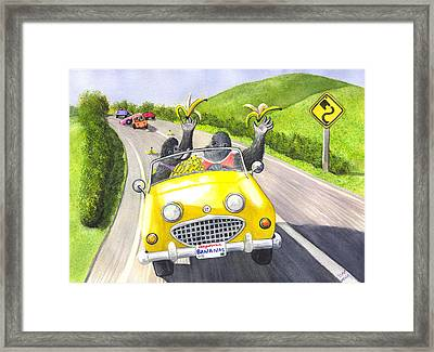 Going Bananas Framed Print by Catherine G McElroy