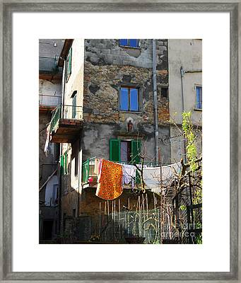 Going Green Framed Print by Mel Steinhauer