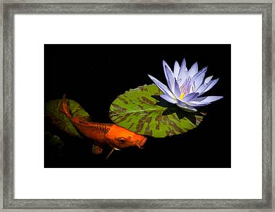 Gold And Blue Framed Print by Priya Ghose