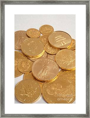 Gold Coins Framed Print by Catherine Ursillo