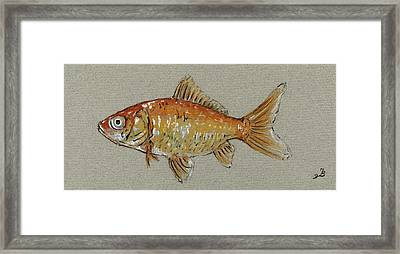 Gold Fish Framed Print by Juan  Bosco