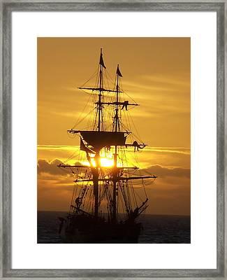 Gold Lady Washington  Framed Print by Jim Salisbury