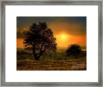 Gold Light Framed Print by Robert Foster