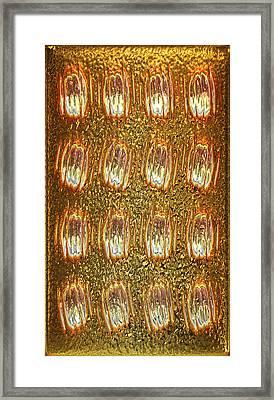 Gold Panel 05 Framed Print by Li   van Saathoff