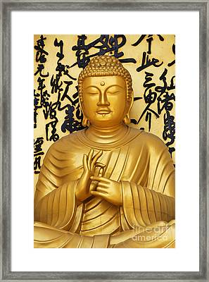Golden Buddha Statue At The World Peace Pagoda Pokhara Framed Print by Robert Preston