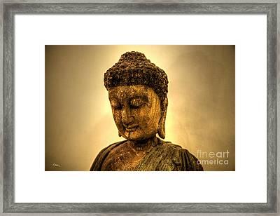 Golden Buddha Framed Print by T Lang