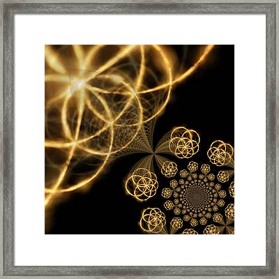 Golden Circles Framed Print by Tom Druin