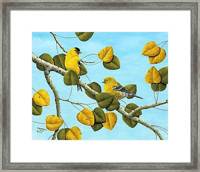 Golden Days Framed Print by Rick Bainbridge