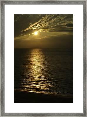 Golden Framed Print by Debra Bowers