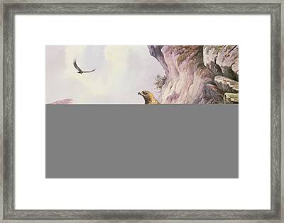 Golden Eagles At Their Eyrie Wc Framed Print by Carl Donner