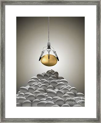 Golden Egg Claw Framed Print by Mike Agliolo
