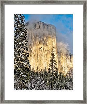 Golden El Capitan Framed Print by Kim Price