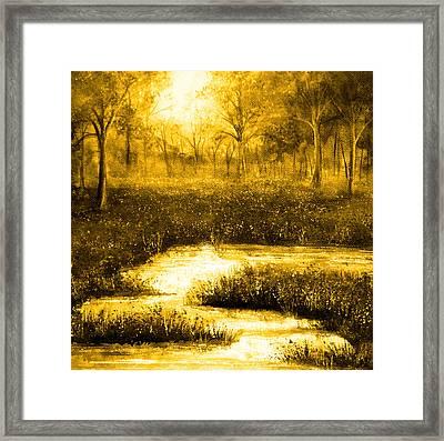 Golden Evening Framed Print by Ann Marie Bone