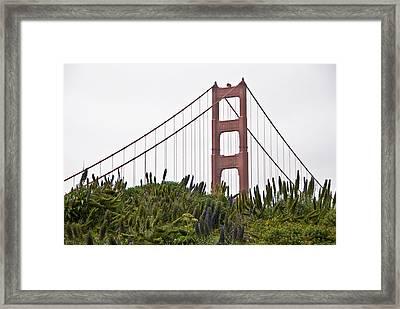 Golden Gate Bridge 1 Framed Print by Shane Kelly
