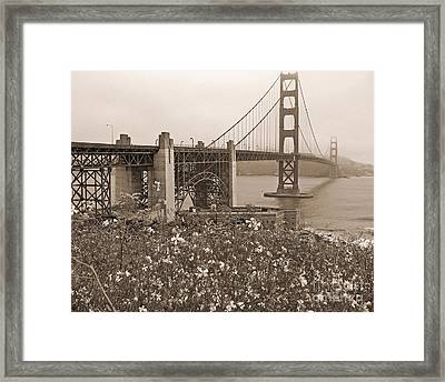 Golden Gate Bridge And Summer Flowers In Sepia Framed Print by Connie Fox