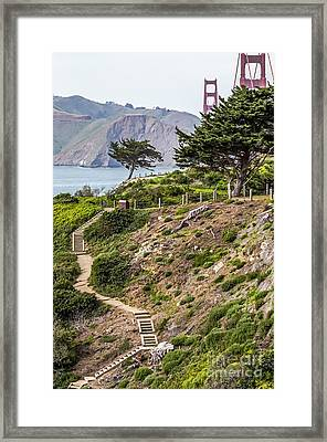 Golden Gate Trail Framed Print by Kate Brown