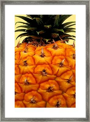 Golden Hawaiian Pineapple Framed Print by James Temple