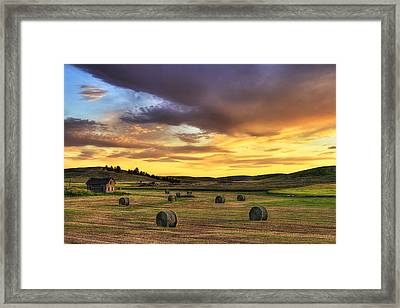 Golden Hour Farm Framed Print by Mark Kiver