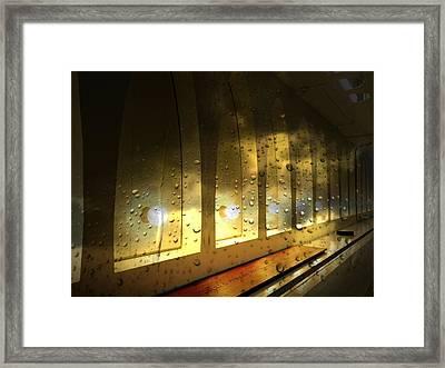 Golden Hue Framed Print by Marcia Lee Jones