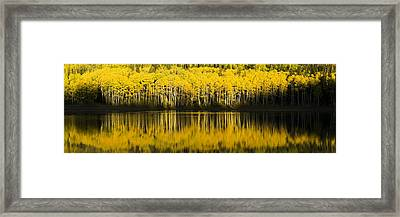 Golden Lake Framed Print by Chad Dutson