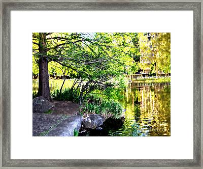 Golden Lake Framed Print by Terry Wallace