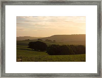 Golden Land Framed Print by Shari Mattox