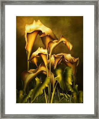 Golden Lilies By Night Framed Print by Georgiana Romanovna