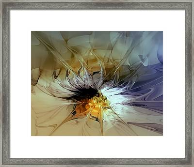 Golden Lily Framed Print by Amanda Moore