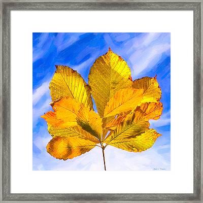 Golden Memories Of Fall Framed Print by Mark E Tisdale