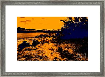 Golden Nights Framed Print by Mickey Harkins