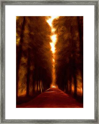 Golden October Framed Print by Stefan Kuhn