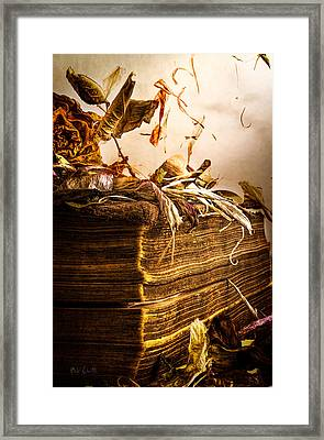 Golden Pages Falling Flowers Framed Print by Bob Orsillo