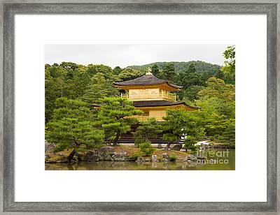Golden Pavilion Kyoto  Kinkaku-ji Framed Print by Fototrav Print