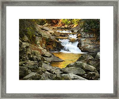 Golden Pond Framed Print by Penny Lisowski