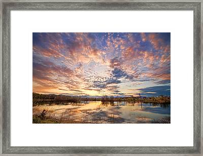 Golden Ponds Scenic Sunset Reflections 4 Framed Print by James BO  Insogna