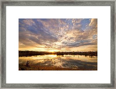 Golden Ponds Scenic Sunset Reflections Framed Print by James BO  Insogna
