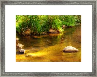 Golden Reflections Framed Print by Michelle Wrighton