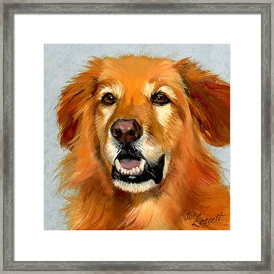 Golden Retriever Dog Framed Print by Alice Leggett
