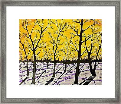 Golden Shadows Framed Print by Jeffrey Koss