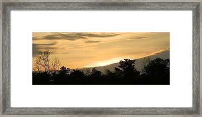 Golden Sky Framed Print by Ione Hedges