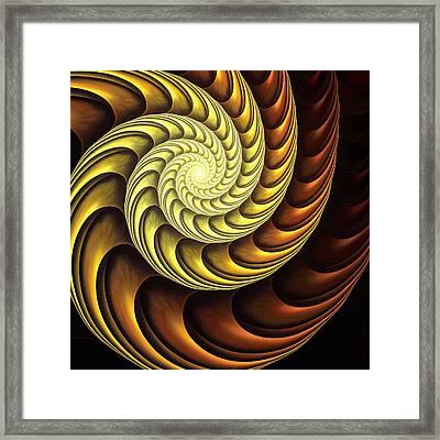 Golden Spiral Framed Print by Anastasiya Malakhova